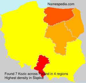 Surname Kozic in Poland