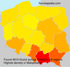 Koziol - Poland
