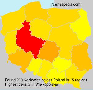 Kozlowicz
