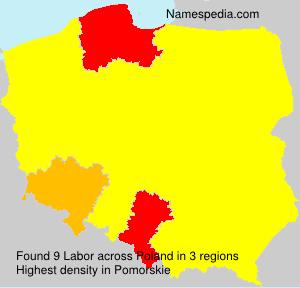 Surname Labor in Poland