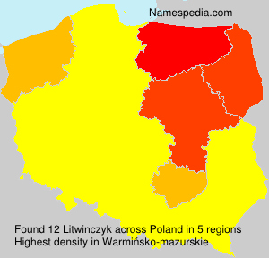 Surname Litwinczyk in Poland