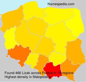 Familiennamen Lizak - Poland
