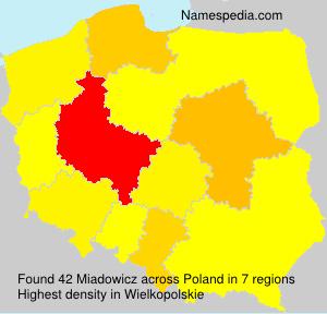 Miadowicz