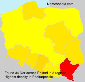 Familiennamen Ner - Poland