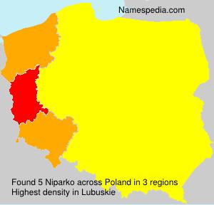 Surname Niparko in Poland