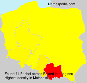 Surname Pachel in Poland