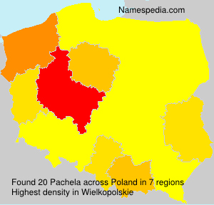 Surname Pachela in Poland