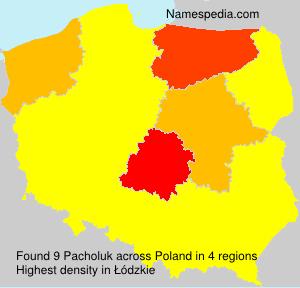 Pacholuk