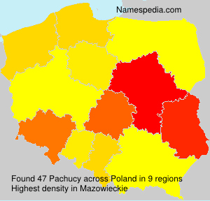 Surname Pachucy in Poland