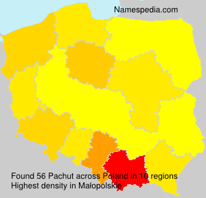 Pachut