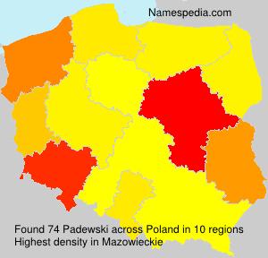 Surname Padewski in Poland