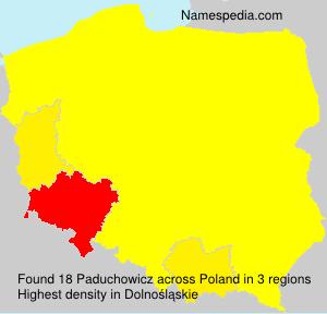 Paduchowicz