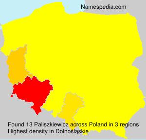 Paliszkiewicz