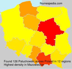 Paluchowski
