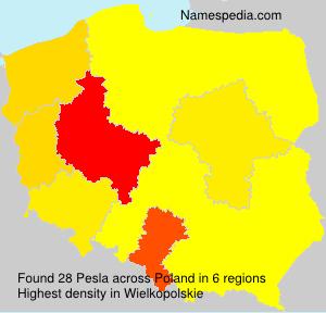 Surname Pesla in Poland