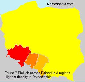 Pieluch - Poland