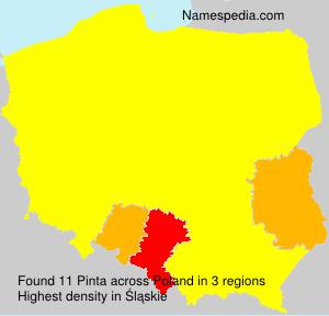 Surname Pinta in Poland
