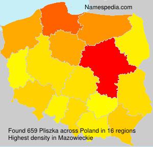 Pliszka - Poland