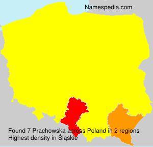 Prachowska