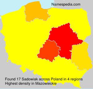 Familiennamen Sadowiak - Poland