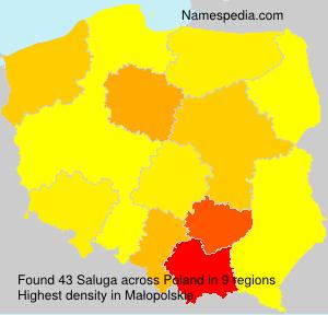 Surname Saluga in Poland