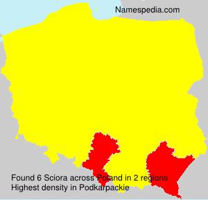 Familiennamen Sciora - Poland