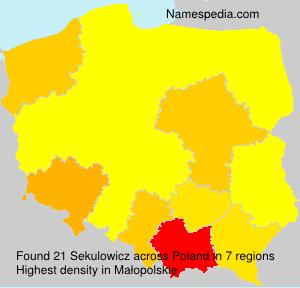 Familiennamen Sekulowicz - Poland