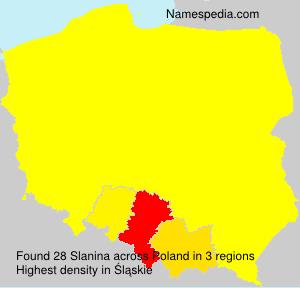 Surname Slanina in Poland