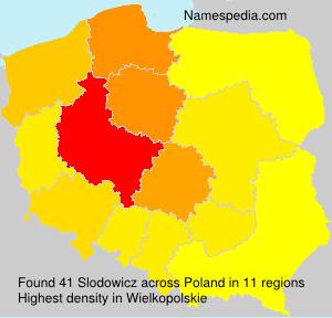 Slodowicz