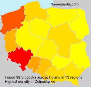 Slugocka