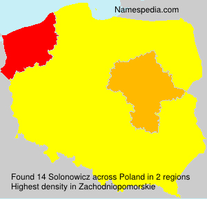 Surname Solonowicz in Poland