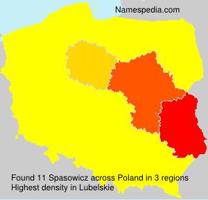 Spasowicz