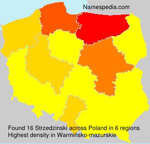Surname Strzedzinski in Poland
