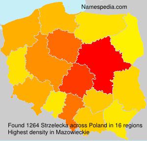 Surname Strzelecka in Poland