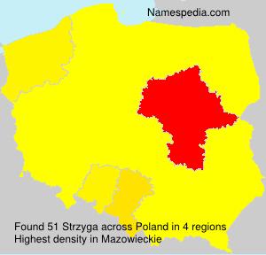 Surname Strzyga in Poland