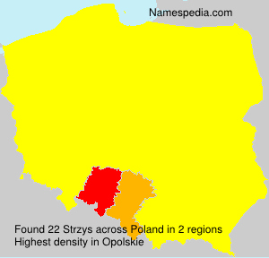 Surname Strzys in Poland
