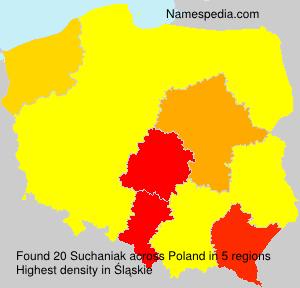 Surname Suchaniak in Poland