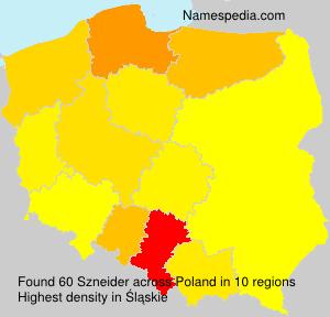 Familiennamen Szneider - Poland