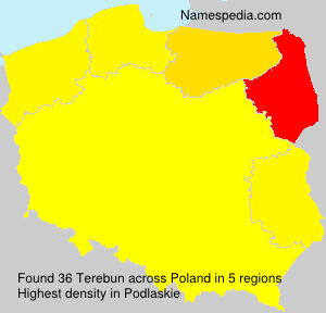 Surname Terebun in Poland