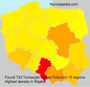 Tomaszek