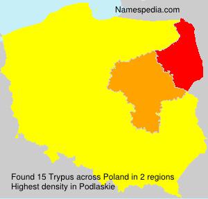 Trypus