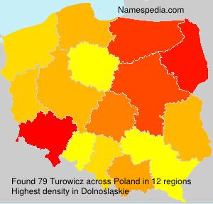 Surname Turowicz in Poland