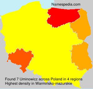 Uminowicz