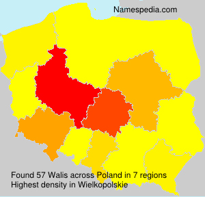 Surname Walis in Poland