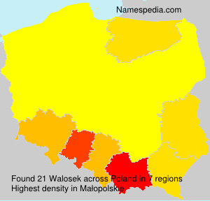 Surname Walosek in Poland