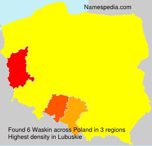 Waskin