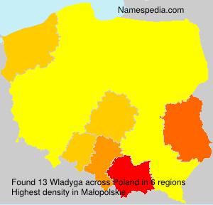 Wladyga