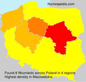 Familiennamen Wozniecki - Poland