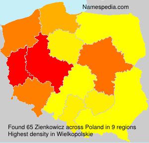Zienkowicz