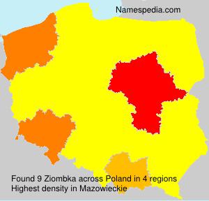 Ziombka